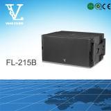 FL-12 Berufs2wegdoppeltes 12 '' PA-Systems-Zeile Reihen-Lautsprecher