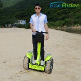 собственная личность Китая силы 4000W балансируя электрический самокат, электрический Chariot Patroller, самокат баланса