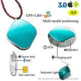 GPS van de activiteit Drijver met het Drievoudige Plaatsen (A9)