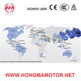 Hmvp Frequenz-Inverter-Geschwindigkeits-Steuerung, asynchroner Induktions-Motor Hmvp801-2p-0.75kw