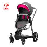 Baby-Spaziergänger mit Ruhm und regelmäßigem Sitz