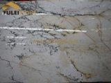 Компании поставкы мрамора сляба Paonazzo белые мраморный