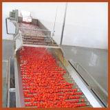 Máquina de classificação da fruta
