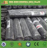 Rete metallica del pollo del PVC di alta qualità dalla fabbrica