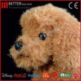 견면 벨벳 개 연약한 브라운 살아있는 것 같은 푸들 현실적 박제 동물 장난감