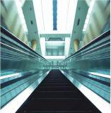 Syney Handelsrolltreppe Vvvf Laufwerk (XNF-014)