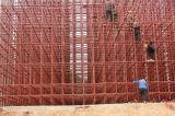 Système en acier d'échafaudage de serrure de tasse de serrure rapide