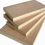 1220X2440mm Okume Face Plywood para Furniture (QDGL146)