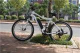 リチウム電池が付いている多彩なフレーム350With500With750W /1000Wの電気マウンテンバイク