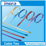 Strichleiter-mehrfacher Verschluss-Edelstahl-Kleber-überzogener Kabelbinder