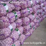 Aglio bianco fresco cinese del nuovo raccolto
