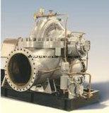 S tipos de bombas Hydro-carbono doble succión centrífuga