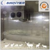 Cámara fría de Shinyer/conservación en cámara frigorífica/congelador de ráfaga