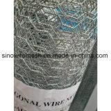Горячее окунутое гальванизированное плетение мелкоячеистой сетки с конкурентоспособной ценой