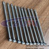 Zn Drilling de la vis 4.8X89 d'individu