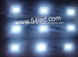 SMD 5050 LED 모듈 저가 공급