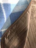 専門のピクニック北極の羊毛は総括的な飛行中のピクニック防水毛布の一面をおおう