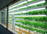 O diodo emissor de luz suplementar cresce claro para colheitas especiais