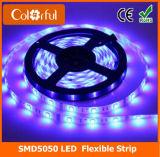 Ce/RoHSの高い内腔DC12V SMD5050 LEDのストリップ