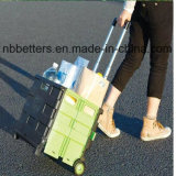 Qualitäts-Form-Plastikeinkaufen-Laufkatze