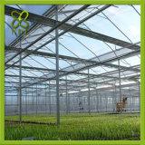 최신 판매 농업 온실
