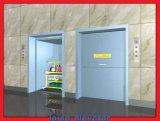 Nahrungsmittelhöhenruder Umbwaiter Aufzug des Edelstahl-100kg-500kg für Verkauf