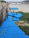 Il pontone personalizzato di colore DIY fa galleggiare il bacino da vendere