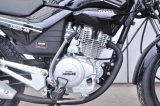 Motocicleta redonda de Ybr da lâmpada