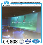 Precio de acrílico modificado para requisitos particulares de la pared de la ventana de los acuarios