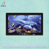 """jeu sous-marin de luxe de caméra vidéo de détecteur de 7 """" poissons de la couleur TFT"""