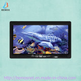 "jogo subaquático do luxo da câmara de vídeo do inventor de 7 da "" peixes cor TFT"