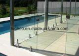 Broche en verre de grand dos d'acier inoxydable pour la clôture de syndicat de prix ferme de Frameless