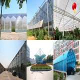 Holle Blad van Vier Muur van het polycarbonaat het Mist voor de Garantie van 10 jaar