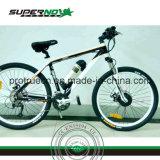 36V 250W 무브러시 모터 Elecric 자전거