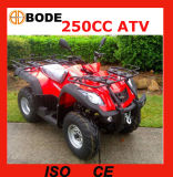 250cc ATV avec l'engine Mc-373 de Jianshe YAMAHA