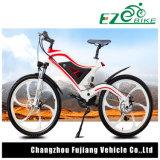 2車輪はインポートのセリウムの承認電気山の自転車を立てる