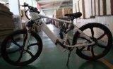 350W 29inch 프레임 좋은 장비 전기 스포츠 산 E 자전거