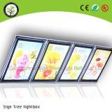 Doppia casella chiara di pubblicità parteggiata acrilica dell'interno del menu del LED