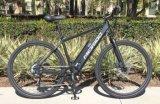 Fahrrad-/Street E-Fahrrad der elektrisches Fahrrad schwanzloses Mortor Lithium-Batterie-/Adult-Stadt-E (SY-E2820)