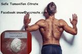 Agente di taglio di supplementi degli steroidi dell'estrogeno di salute del cancro della mammella della polvere degli steroidi anabolici del citrato di Tamoxifen anti
