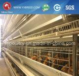 Gaiola de bateria da exploração avícola para a exploração agrícola de Kenya