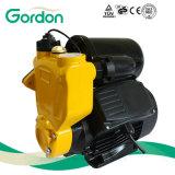 Bomba auto autocebante eléctrica doméstica del alambre de cobre con el impulsor de cobre amarillo