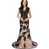 Formale Abend-Kleid-Mutter der Braut-Trompete/Nixe V-Stutzen Gerichts-Serien-Spitzes mit Appliques/Spitze (Dream-100098)