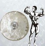 Esteróides anabólicos orais Winstrol de 98% para o crescimento 10418-03-8 do músculo