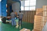 Elektrische Wannen-Zentrifuge des Labor6