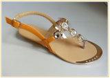 Sandalo del vestito da modo delle donne