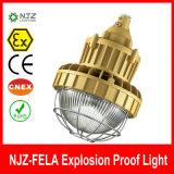 Explosionssicheres Licht IP66 mit Atex genehmigte
