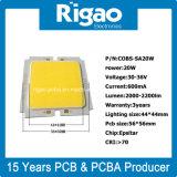 Fabricante innovador y profesional para la MAZORCA del LED