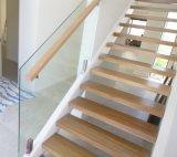 Pêche à la traîne en verre de broche neuve de modèle pour l'escalier