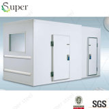 Cella frigorifera Frozen per tutti i generi di alimenti